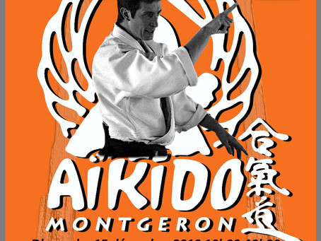AIKIDO: Stage Pascal Guillemin