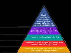 Maslows behovspyramide er vigtigt at kende, når man vil sælge noget på skrift