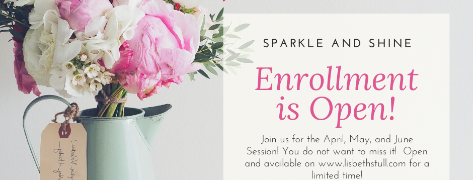 Sparkle & Shine Subscription Group- NO WOOD OPTION