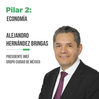 Alejandro Martín Hernández Bringas