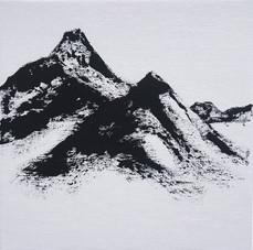 Montanea XVI