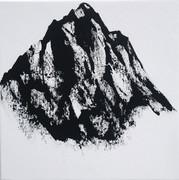 Montanea X