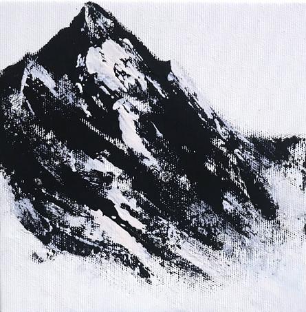 Montanea XVIII
