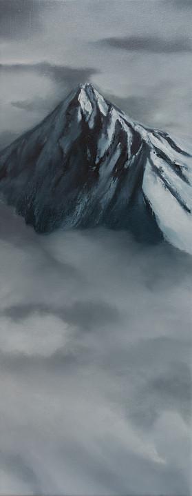 Montanea VIII