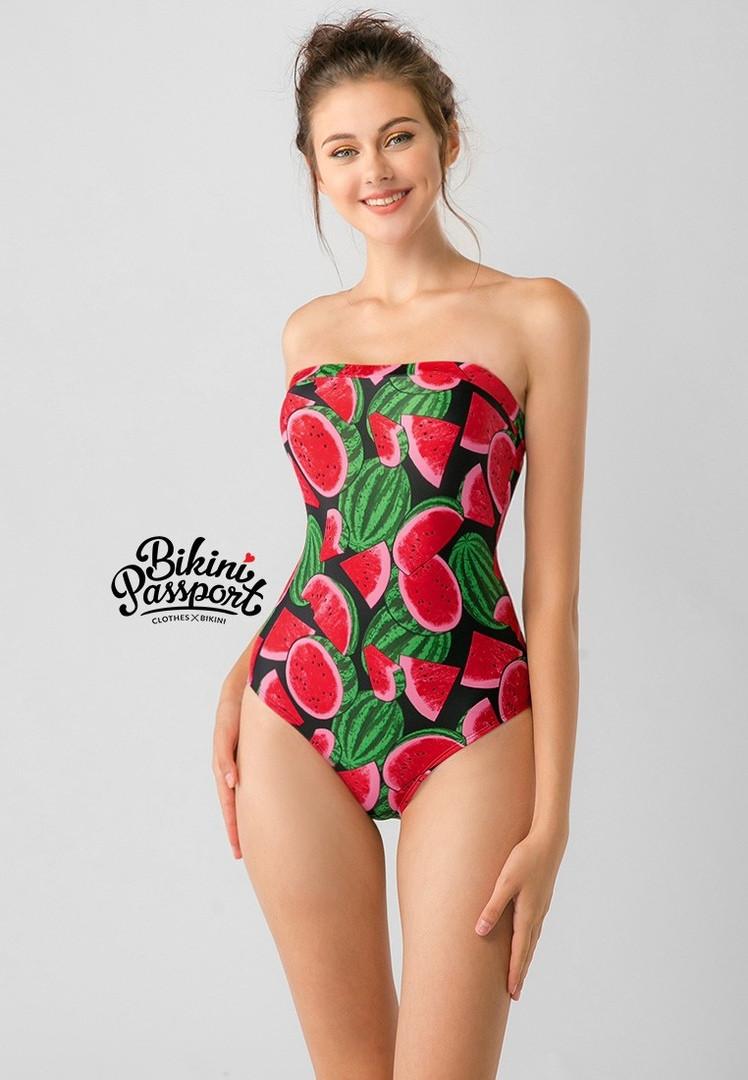 Bikini Passport4.jpg