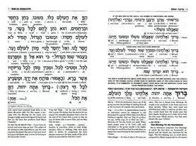 IBENW Schottenstein Edition Interlinear