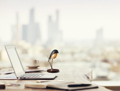 17_desk pen.jpg