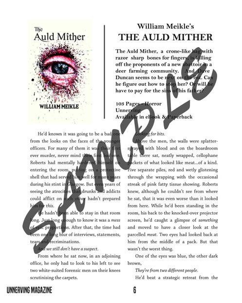 Interior - 3-Page Book Excerpt