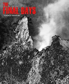 The Final Days.jpg