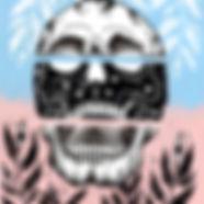 pastelskull.jpg