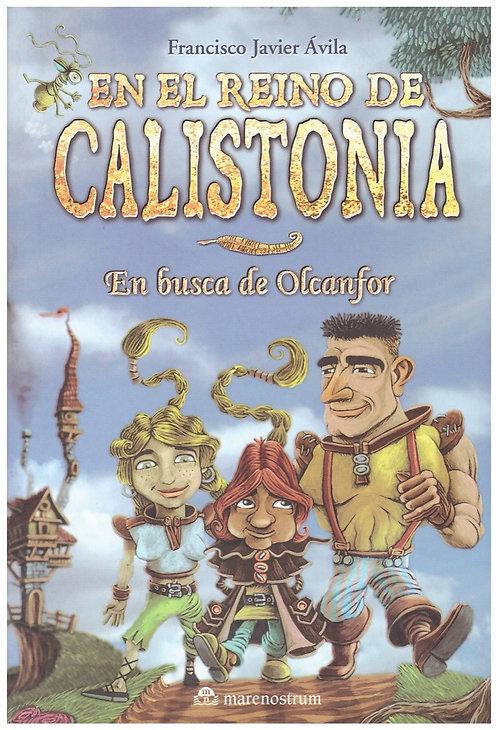 En el reino de Calistonia. En busca de Olcanfor
