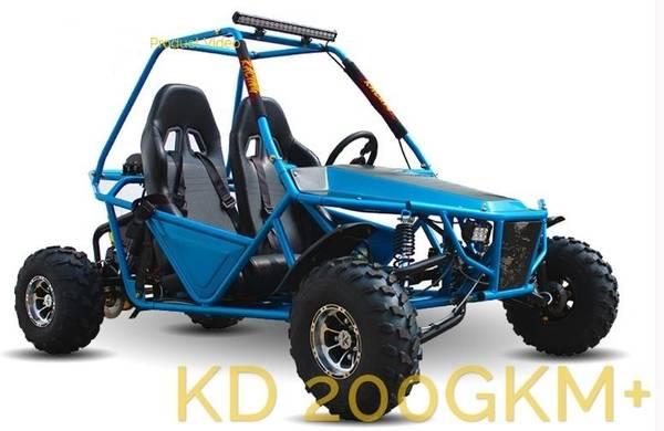Kandi Viper 200