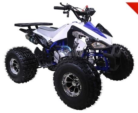 New Cheatah 125 Sport $1199
