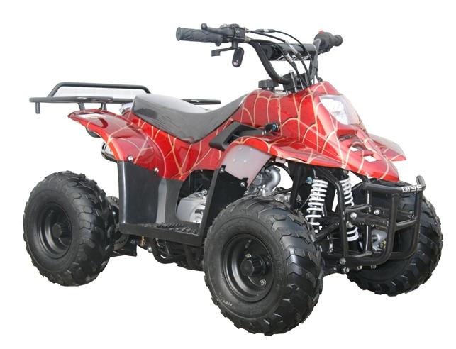 Mini 110 ATV $699