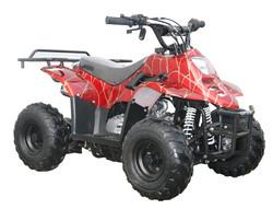 Mini 110 ATV $849