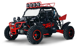 BMS V-twin buggy 800 platinum $14599*