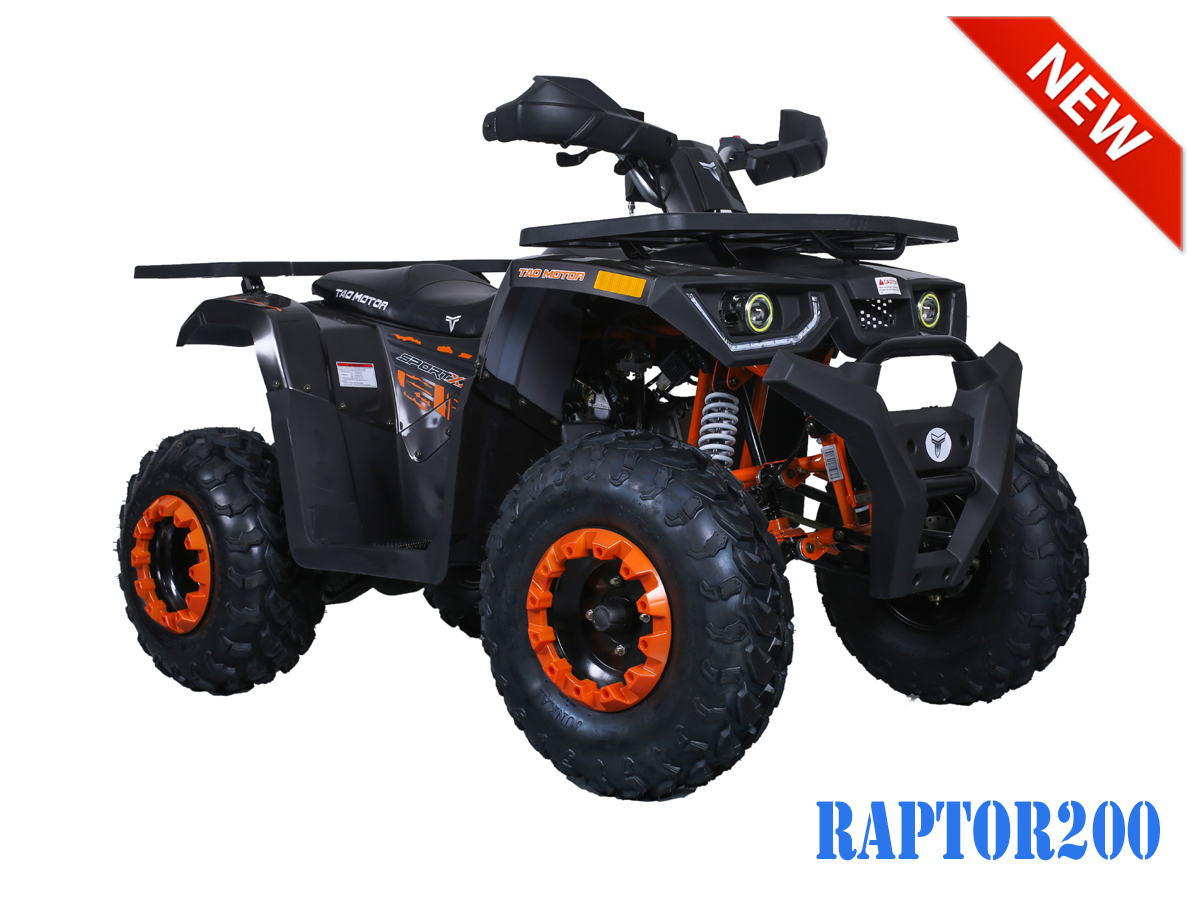 Raptor 200 ATV