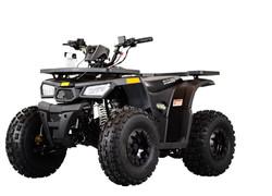 Rival-Mudhawk-10 utility ATV ONLY $1699