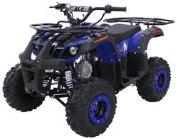 MId Size Utility 125 ATV