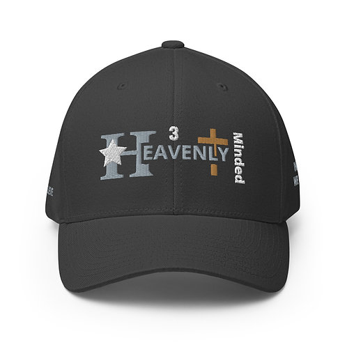 Heavenly Minded  -  Structured Twill Cap