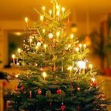 Merry Christmas awalkingnewman.png