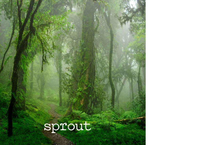 Sprout%20con%20logo_edited.jpg