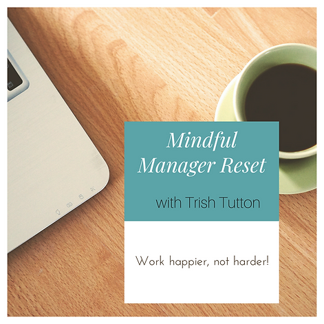 Mindful Manager 2.png