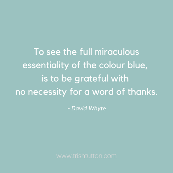 Gratitude and Presence go hand in hand.