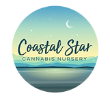 Coastal Star Logo FINAL - Main Vector (1