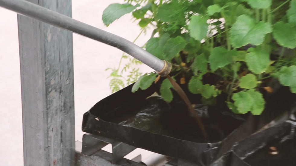 Jonna's Compost Mix_1.mp4