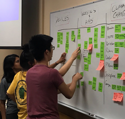 Affinity Mapping (1)
