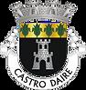 Casa do Concelho de Castro Daire.png