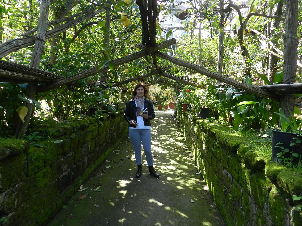 I Giardino di Cataldo - Lair Bachieg