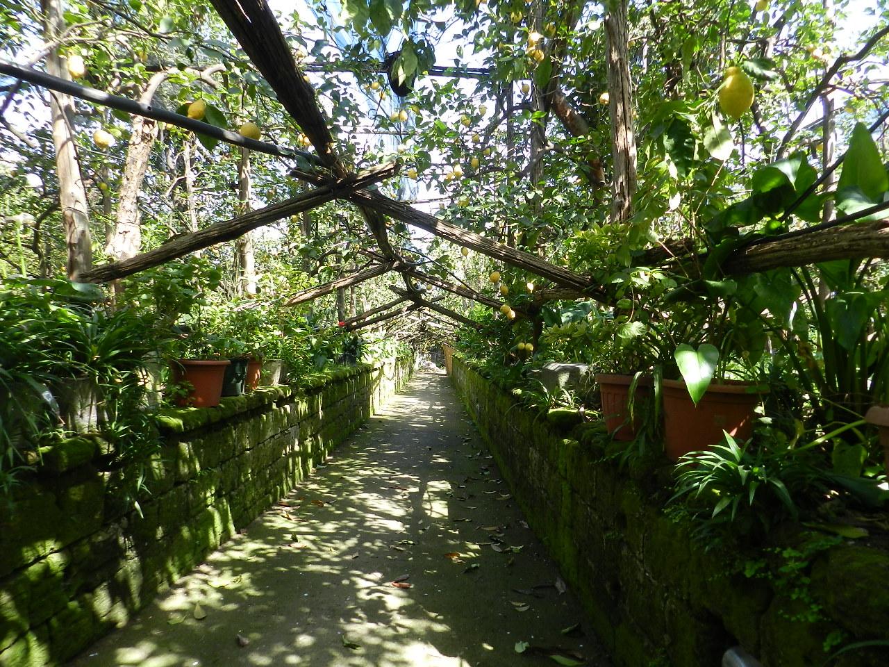 I Giardino di Cataldo