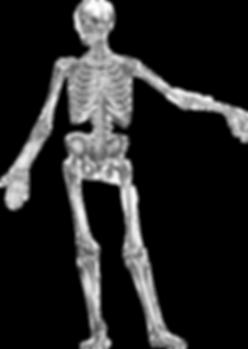 Trattamenti osteopatici studio morao monza