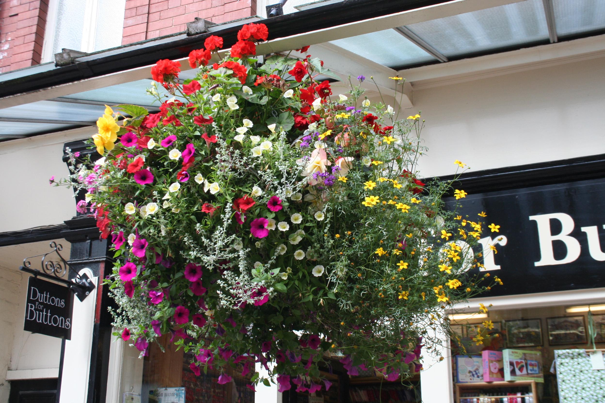 Harrogate in Bloom