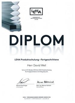 Diplom 2014 001