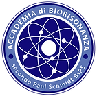 Logo Accademia BsPS.png