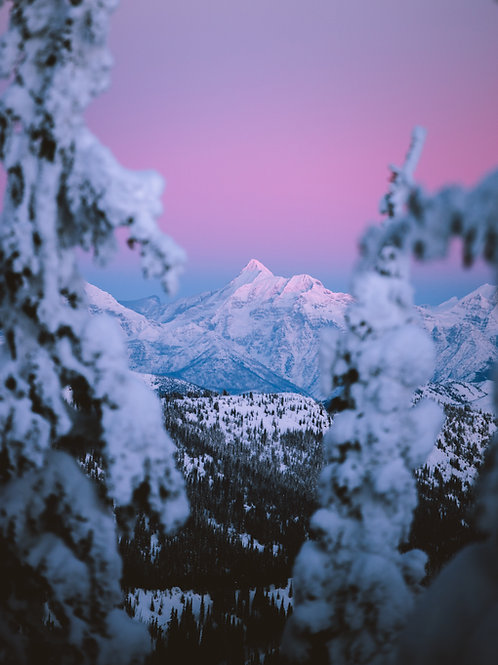 Winter Alpenglow