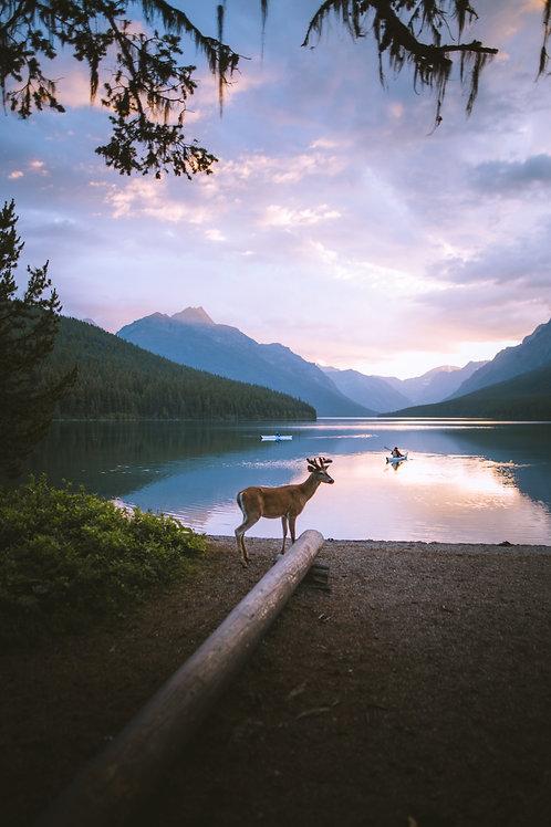 Montana Moment