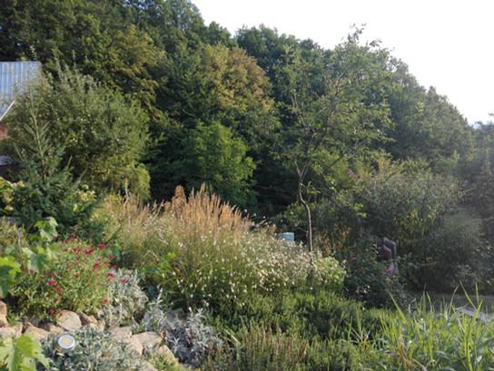 Zahrada v anglickém stylu -kořenová čistička