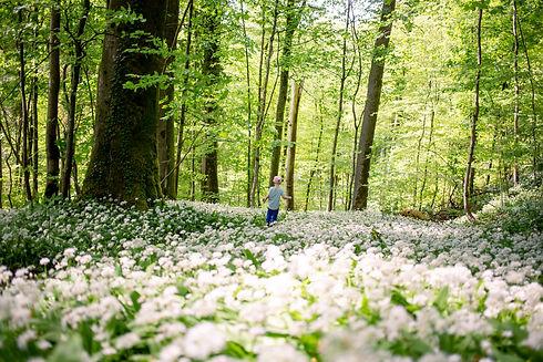 Dítě v lese.jpg