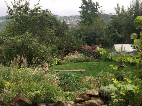 Zahrada v anglickém stylu -pohled z terasy