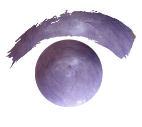 #1019 Hydrangea ~ 2ozs