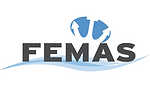 Federation of European Maritime Associations of Surveyors and Consultants Logo