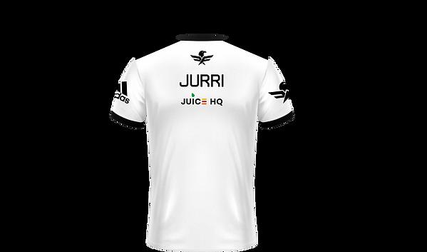 JURRI.png