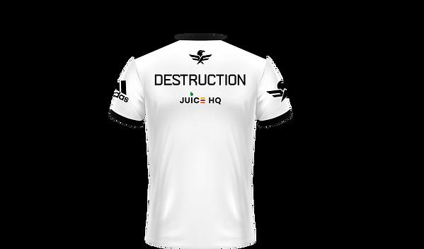 destruc.png