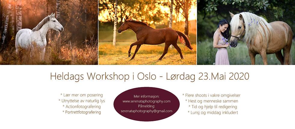 Workshop-Oslo-2019_Mai.jpg