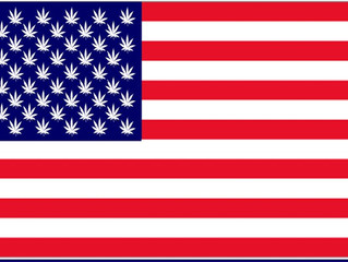 What Civil Rights Are Taken From You By Using Medical Marijuana