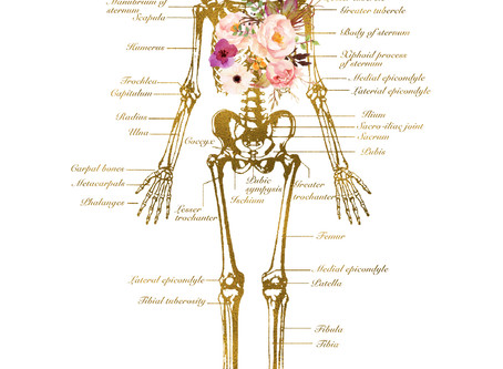 Osteoporosis and bone health, part 1